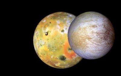 42 ans d'observation Pro-Am des phénomènes mutuels des satellites galiléens